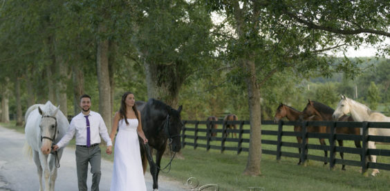 bee buck photography, wedding, equine, photography, Louisville, Kentucky, stone place