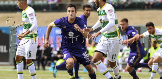 Louisville City FC, Bee Buck Photography, Louisville, Kentucky, Paolo Delpiccilo, Tampa Bay Rowdies